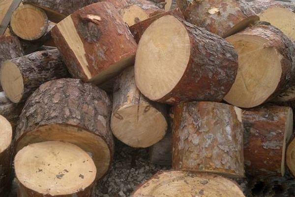 Купить дрова в Борисове
